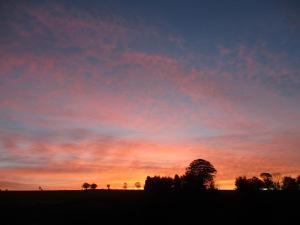 October Dawn 2015
