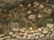 A stack of logs piled ready for the house