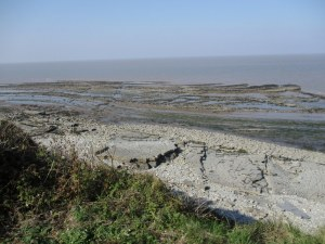 West Somerset Coast, low tide, near Lilstock